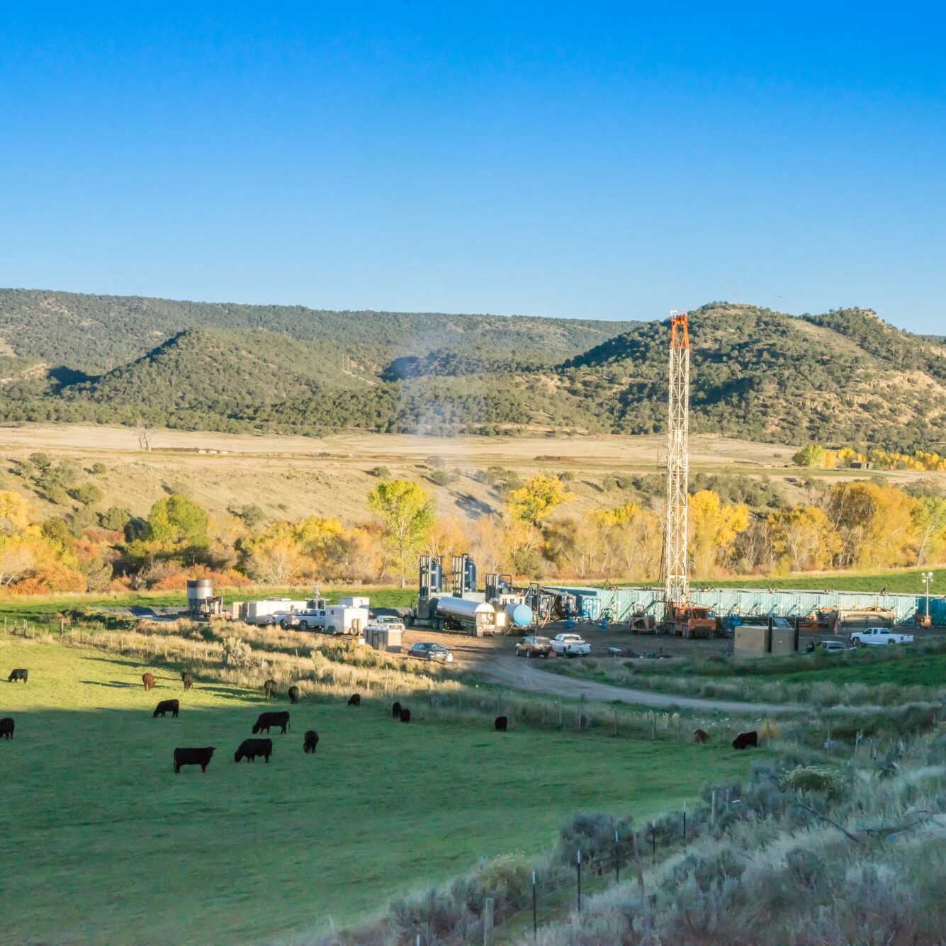 Drilling Fracking Rig in a mountain valley near a field full of cattle grazing.  Fracking Rig is performing a fracking operation to liberate trapped crude oil and natural gas into the pipeline to a refinery.